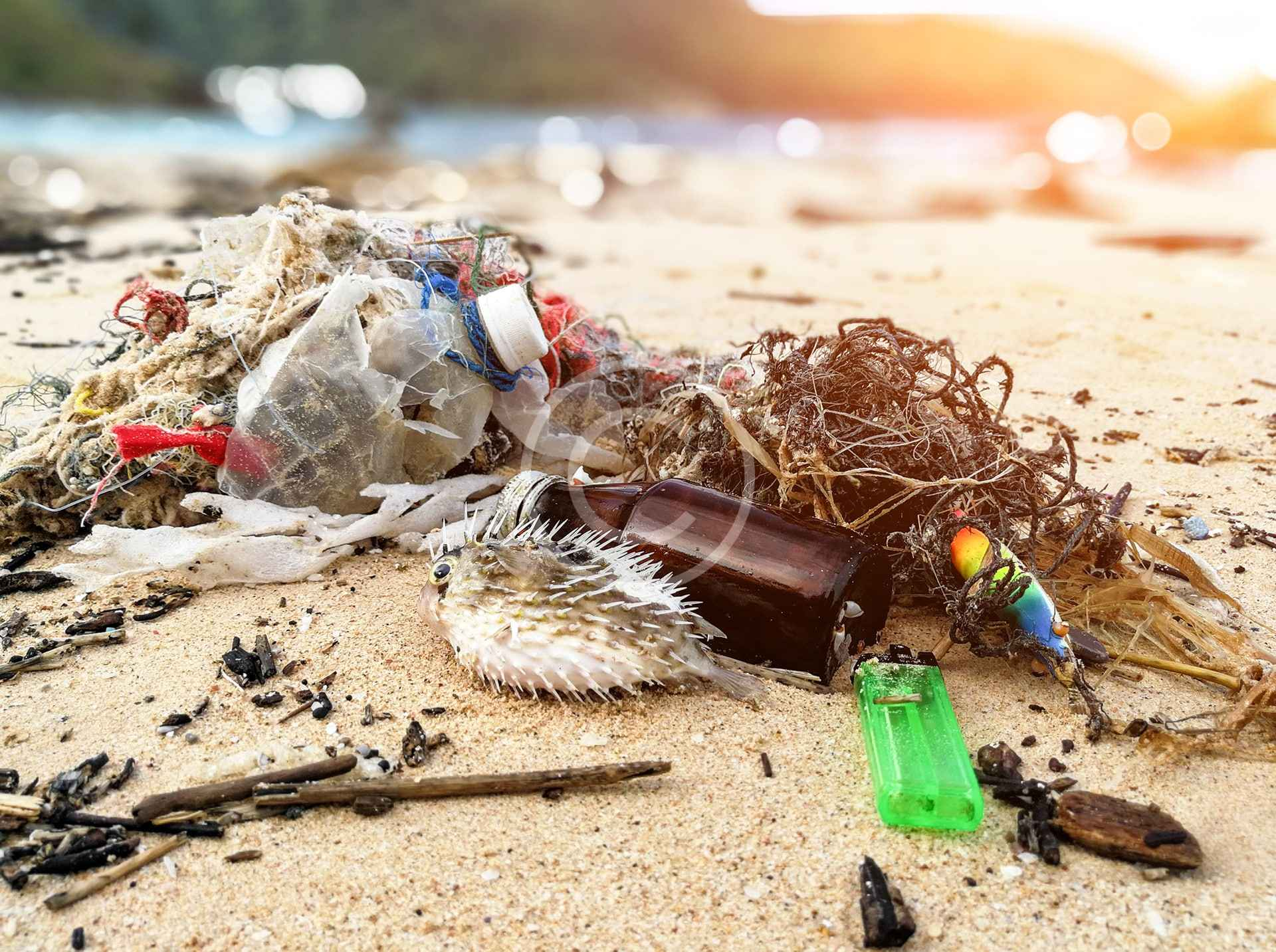 Sign the Plastic-Free Great Lakes Pledge